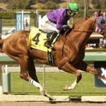 California Chrome Odds to Win Belmont and Become 1st Horse Since Affirmed to Win Triple Crown